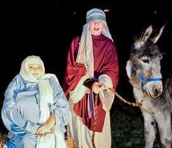 Live Animal Nativity