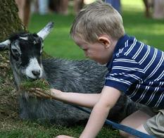 philadelphia petting zoo party