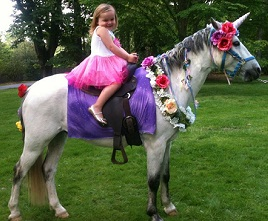 Unicorn Pony Party Rental Traveling Birthday Events Philadelphia